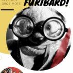 Le Bousin FUribard (2)